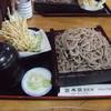 そば処 ほそ川 - 料理写真:ごぼう天そば(大盛)