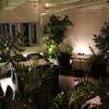 forum - 内観写真:店内は夜の公園をイメージ♪席は広くゆったりと過ごすことができます。日々の忙しい時間から解放されて落ち着ける時間を感じていただければ幸いです。