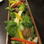 19888051 - 16品目野菜のデトックスサラダ(全長50センチ)