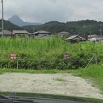 福家 行幸田本店 - 駐車場は砂利です。