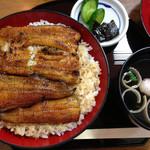 浜松 - うなぎ丼「上」大盛り