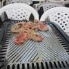 福ビル しばふビアガーデン - 料理写真:お肉を焼いてビールで乾杯です。