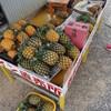 やまねこ農園 - 内観写真:ピーチパインの路上販売150円くらいで美味しい塾したのが買えます。
