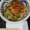 さぬき麺屋 鳳直売所 - 料理写真:コクうまサラダうどん