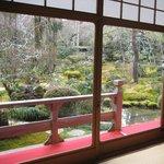 西源院 - 庭園の眺め