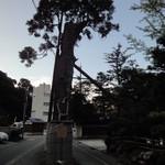 喜多八 - 料理写真:黄門杉