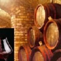 南仏を中心にセレクトしたワインを数多く取り揃えております。ぜひご賞味くださいませ。