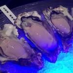 MAIMON - 厚岸産生牡蠣  クリーミィ!(^^)