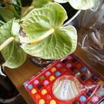 うみひこ やまひこ - 姉妹店、東加古川のBar FIELDの5周年記念の花達((2013.10.31)