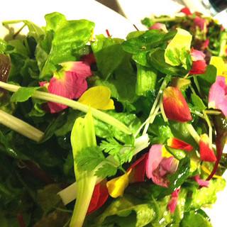 有機•無農薬野菜