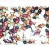 河原本店 乾物店 - 料理写真:乾燥豆6種を混ぜてジップロックで保存