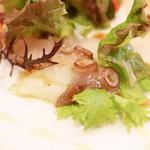 Bistrot Enry. - 本日の鮮魚のオードブル、サラダ仕立て 明石のタコのバシル和え '13 10月下旬