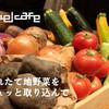 レーベルカフェ OSAKA - その他写真:旬の地野菜をギュッと詰め込んで