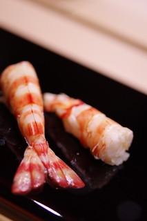 鮨さゝ木 - 車蝦(くるまえび)