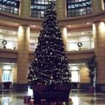 22468609 - ロビーには クリスマスツリー