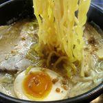 らーめん加茂川 - 加茂川とんこつ塩の麺