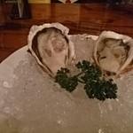 イーグル - 的矢の牡蠣
