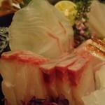 旬鮮炭火焼 獺祭 - 刺身アップ