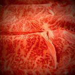 薩摩の牛太 - 料理写真:こだわりのタレと共に是非ご賞味下さい。