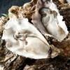 魚バカ 浜料理 厚岸漁業部 祐一郎商店 - 料理写真:日本国内で唯一、年中食べることができる厚岸の牡蠣!当店はそんな新鮮な牡蠣を毎日提供させていただいております!海の栄養と旨みをぎゅっと詰め込んだ牡蠣を是非この機会に!