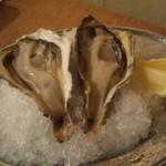 かき小屋フィーバー222 - 生牡蠣  兵庫県赤穂産