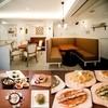 dammi - 内観写真:韓国料理の新しい提案
