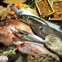 毎日美味しい魚を厳選して仕入れています!