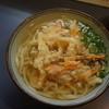 まことうどん - 料理写真:かき揚げうどん
