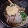 Honkakuteuchiudonarata - 料理写真:ぶっかけ天 冷