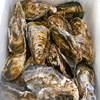 松本水産 - 料理写真: