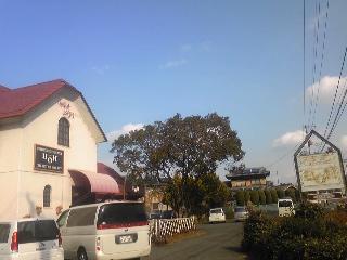 Cafe Rest BON