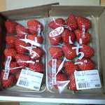 農マル園芸 吉備路農園 - 紅ほっぺ 680円×2パック買ってかえりました<2014.01.13>