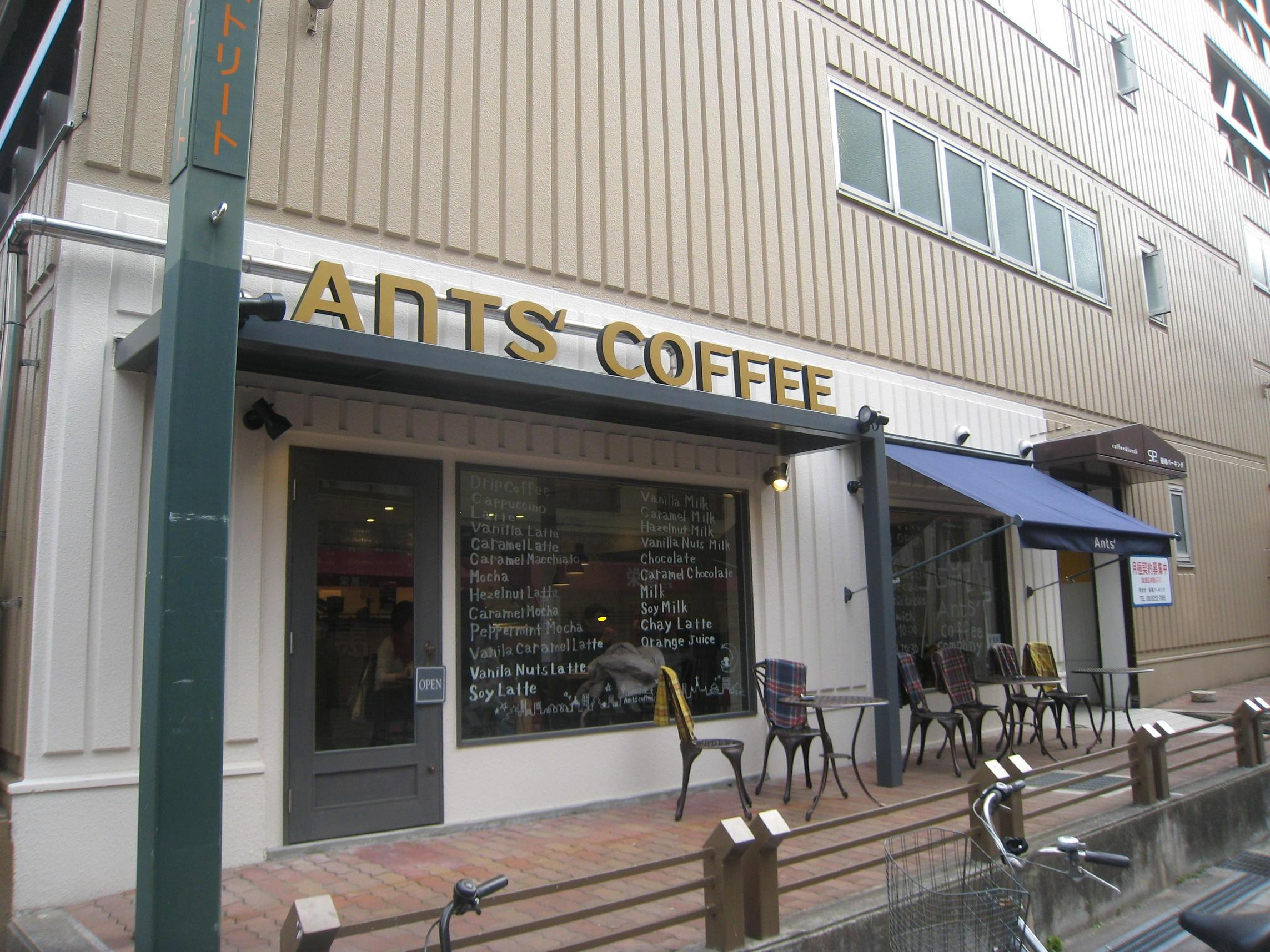 Ants' coffee company