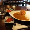 あねさ茶屋 - 料理写真:飛騨牛ビーフカレーじゃがコロッケのせ1300円、サラダは別(2014.1.25)