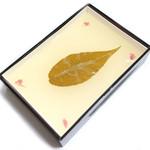 吉野本葛 天極堂 - 葛もち プレーン (945円) '13 11月上旬