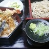 野路 - 料理写真:姫天ぷら丼(580円)574kcal+姫ざるそば(470円)235kcal