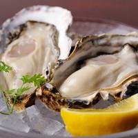 常時10種類以上取り揃えた『生牡蠣』や自慢の『牡蠣料理』