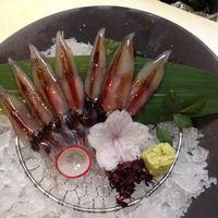 新鮮な魚を一番適した料理ができるお店