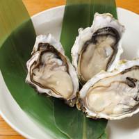 仙鳳趾直送『殻つき生牡蠣』