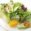 小林食堂 - 料理写真:昆布〆真鯛と十数種の野菜のサラダ仕立て