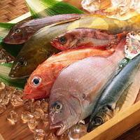 三浦半島の産直食材をぜひお召し上がりください