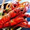 フィンガーズ - 料理写真:毎週月曜日はエビの日!オマール海老半額