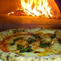 ナポリピッツァ Pizzeria la Rossa - 料理写真:マルゲリータ