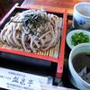 瓢泉亭 - 料理写真:ざるそば
