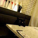 黒猫cafe - 猫ですね☆