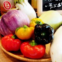 収穫したばかりの新鮮な有機野菜を是非味わってください