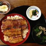 浜松 - うなぎ丼「特」