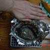漁火の宿大和丸 - 料理写真:アワビ