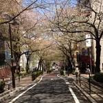 銀座 ほんじん 渋谷店 - 2014年4月7日桜散る