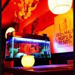 タルカリ - 熱帯魚が見えるテーブルでごゆっくりと。